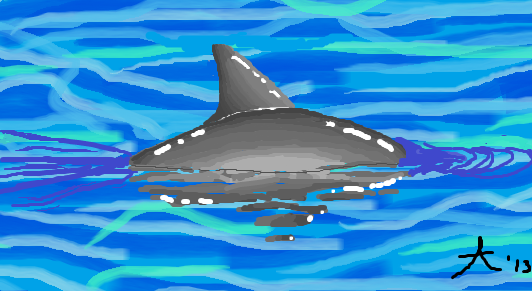Vaquita Swimming