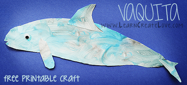 Vaquita craft