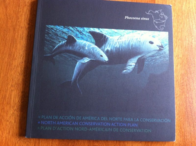 The North American Conservation Action Plan for the Vaquita, 2008.