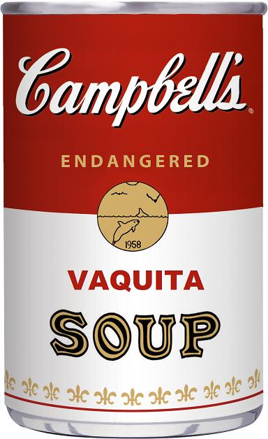 Vaquita soup
