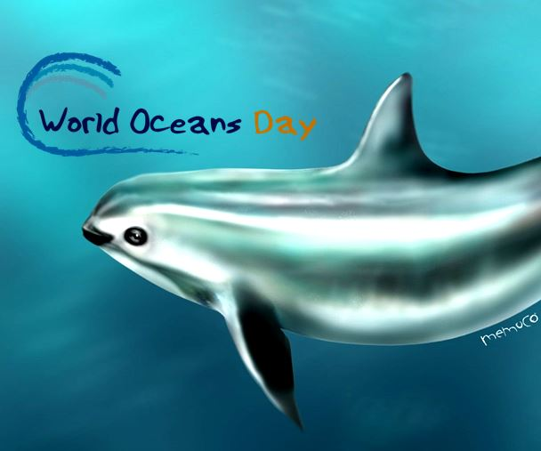 World Oceans Day Vaquita