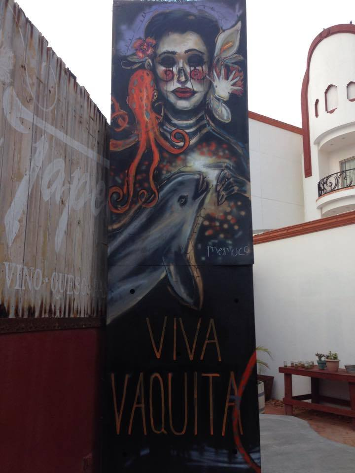Memuco's brand new mural in Puerto Peñasco